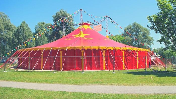 История про то, как я охраняла цирк